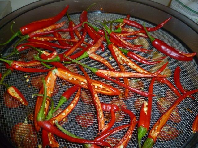 Cayenne pepers in het droogtoestel