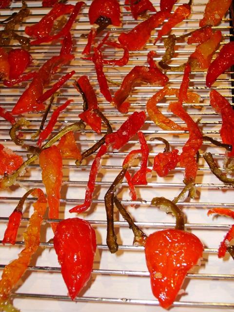 Chilipepers met een suikerjasje