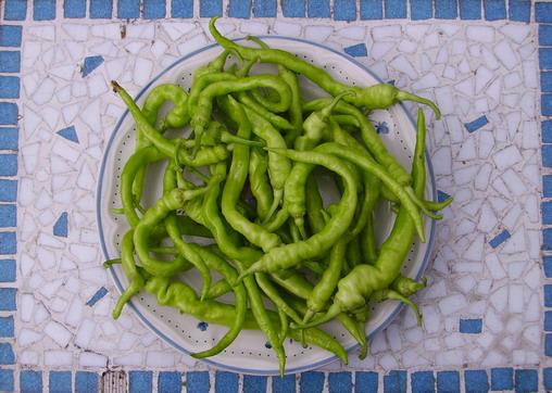 Artisjok en Pepperoncini salade