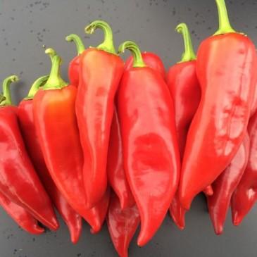 Kapia paprika poeder
