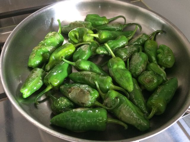 Pimientos de Padron – best food ever
